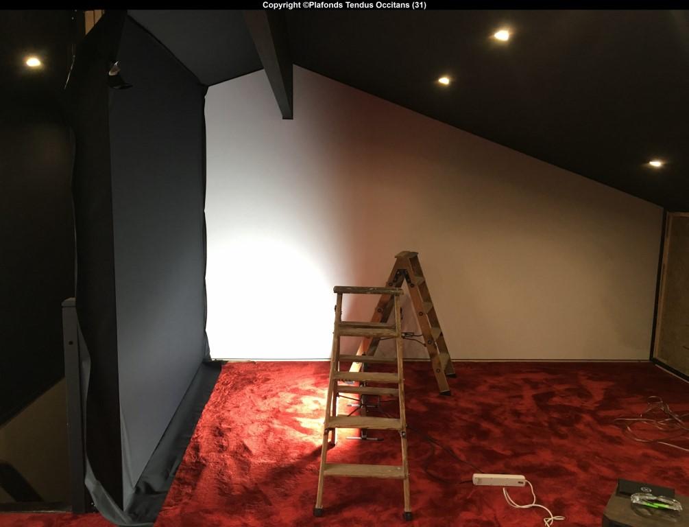 les toiles murales font leur cin ma plafonds tendus occitans. Black Bedroom Furniture Sets. Home Design Ideas