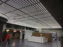 Lumière LED (blanche)